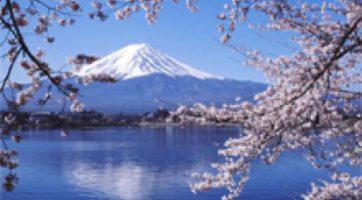 6天日本關東純玩之旅